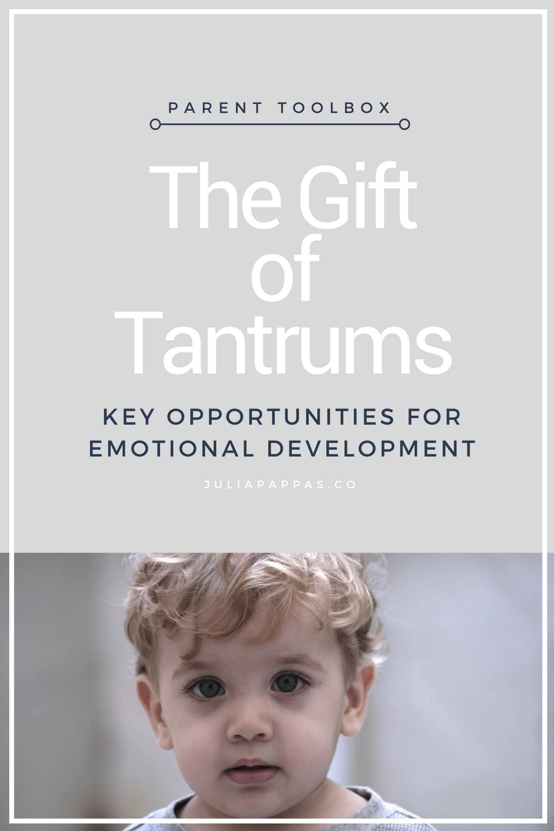the gift of tantrums key opportunities for emotional development